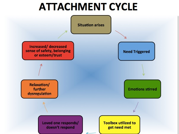 attachment cycle 2